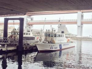 海保 巡視艇 しらぎく